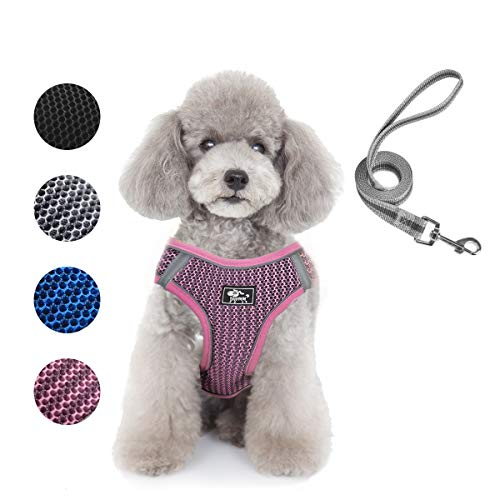 Dog and Cat Universal Harness with Leash - Cat Harness Escape Proof - Adjustable Reflective Step in Dog Harness for Small Dogs Medium Dogs - Soft Mesh Comfort Fit No Pull No Choke (S, Pink)