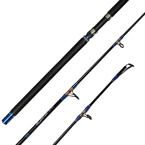 Fiblink Jigging Spinning Rod 1-Piece Saltwater Fishing Jigging Jig Rod (50-80lb,6-Feet,Heavy)