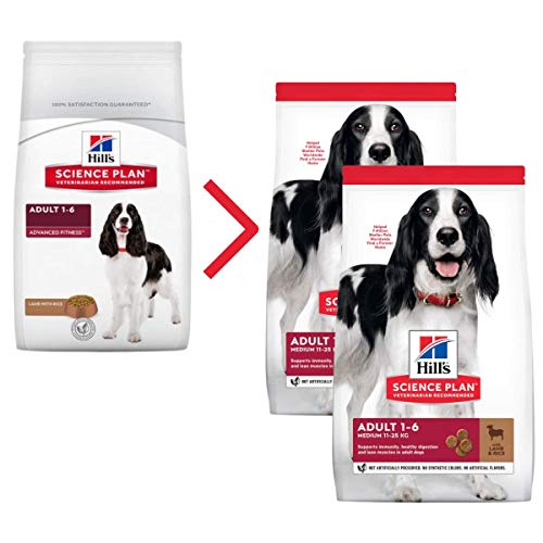 Hill's Science Plan Advanced Fitness - Comida para perros secos (12 kg, tamaño mediano, 2 unidades)