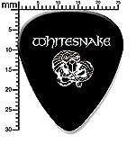 Whitesnake Guitar pick plectrum Single pick 0.71mm medium (BW)