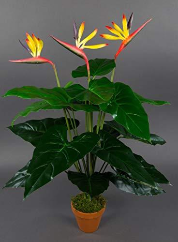 Seidenblumen Roß Strelitzie Real Touch 70cm im Topf ZJ künstliche Strelitzienpflanze Kunstblumen Paradiesvogelblume