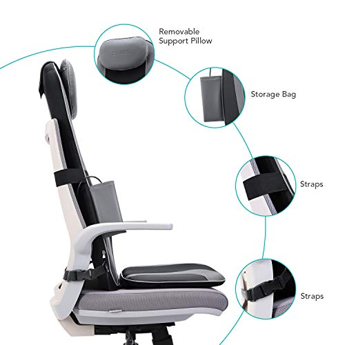 Naipo Shiatsu Back Massager Massage Chair Seat Cushion with Heat and Vibration Function, Relax Full Back Muscles for Home, Office and Car Use