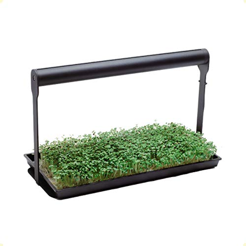 MicroFarm   Professional Microgreen Gardening Kit   Indoor Garden   Incl. Full Spectrum LED Grow...