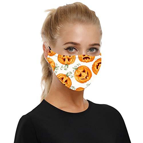 WEXCV 1pc Face Cover + 2pcs Filters Mundschutz Multifunktionstuch Motorrad Winddicht Atmungsaktiv Mundschutz Halstuch Schön Atmungsaktiv Sommerschal (F)