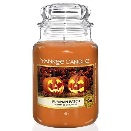 Yankee Candle Duftkerze im Glas (groß) | Pumpkin Patch | Brenndauer bis zu 150 Stunden