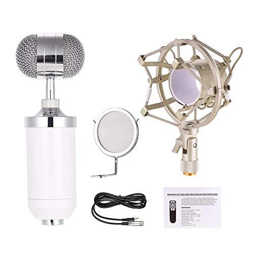 Micrófono Karaoke La grabación profesional de micrófono unidireccional Micrófono condensador Kit de...