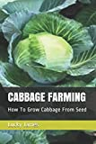 CABBAGE FARMING: How To Grow Cabbage From Seed