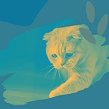 子猫-器楽