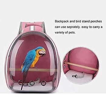 Weesey Cage de Transport pour Oiseaux en PVC léger et Respirant Transparent
