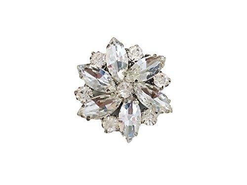La Loria Damen 2 Schuhclips Kristall -Bright Sensuality- Schuhschmuck Braut Schmuck