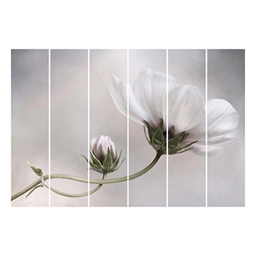 Bilderwelten Cortinas deslizables set - Simply Cosmos - 6 Paneles japoneses, cortina de panel deslizante panel cortina incl. sistema de montaje, Sistema de montaje: Montaje de pared, Tamaño: 250 x 360cm (6 paneles de 250 x 60cm)