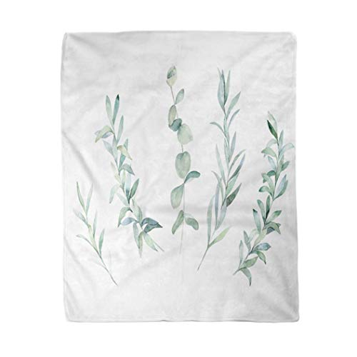 50x60 Inch Soft Decor Throw Blanket Watercolor Greenery Set Hand Drawn Winter With Eucalyptus Branch And Leaves Vintage Warm Cozy Flannel Bed Blankets For Sofa Couch Chair Living Bedroom 48x60IN