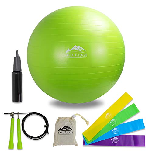 Workout Pack Includes 65cm Yoga Exercise Ball/Chair with Pump - 3m Aluminium Jump Rope - 4 Progressive Loop Bands + Workout Guide to get You Started.