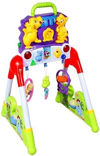 ARTI Lern Interaktives Spielzeug 668-97 ML Lernspielzeug Fitness Spielzeug