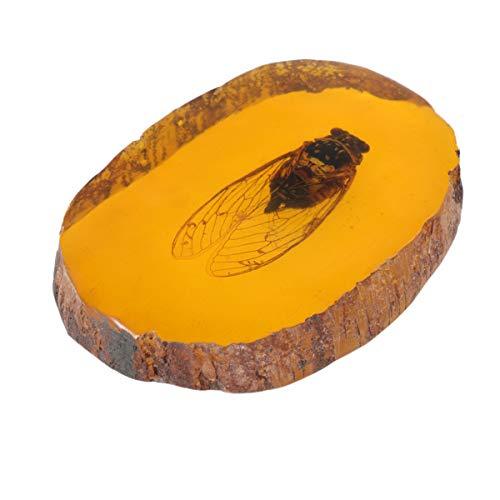 IMIKEYA, 1 pezzo, ciondolo a forma di insetti di ambra artificiale, ciondolo a forma di scorpione, insetti, ambra, pietra ornamentale per amici (zicade)
