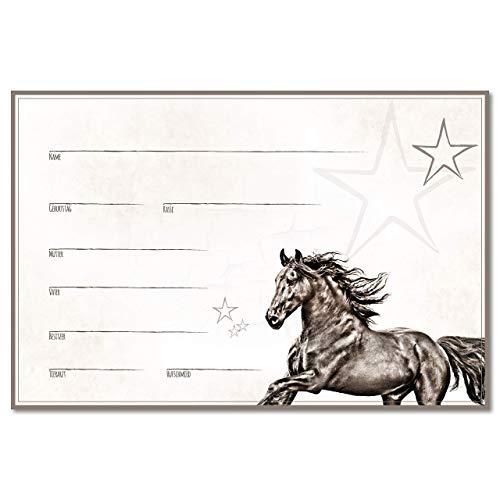 ZAUBERBILD Boxenschild Stallschild Stalltafel Namensschild Pferd 'Friese' 20x30cm Alu