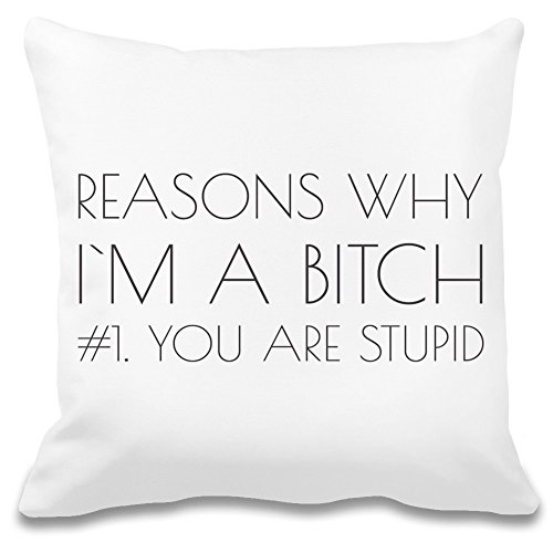 Reasons Why I'm A B***h Funny Slogan Individuelles dekoratives Kissenbezug - 100% weiches Polyester - Dekoratives Wohnaccessoires