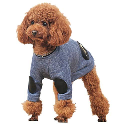Ccgdgft Huisdier benodigdheden Hond Gebreid vest Huisdier Sweater VIP Teddy Bichon Hond Kleding Herfst En Winter Kleding Warme Kleding, blauw (S-XL) (Maat: M), Small