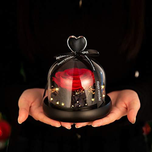 Comius Sharp Ewige Rose im Glas, Konservierte Rose mit LED-Lichtern und Geschenkbox für Mädchen, Valentinstag, Hochzeit, Muttertag, Jahrestag, Geburtstag, Erntedankfest, Weihnachten