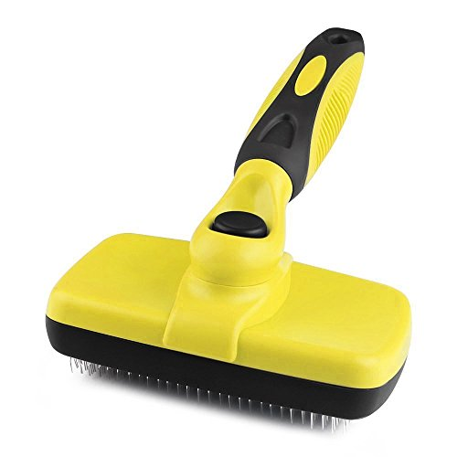 meilleure brosse chat