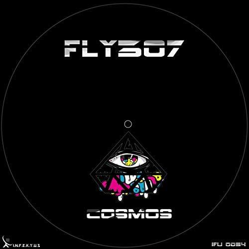 Fly307