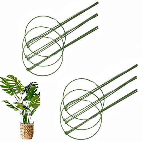 AzulLanse 6 varillas 6 Pcs estacas de soporte para plantas, estacas de metal para plantas de jardín, anillo de soporte para plantas...