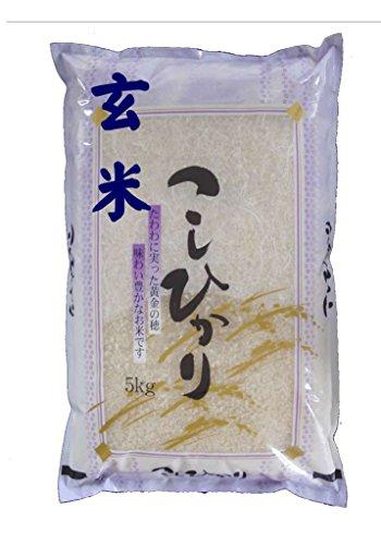 福島県会津産 玄米 石抜き処理済 コシヒカリ 5Kg 令和2年産
