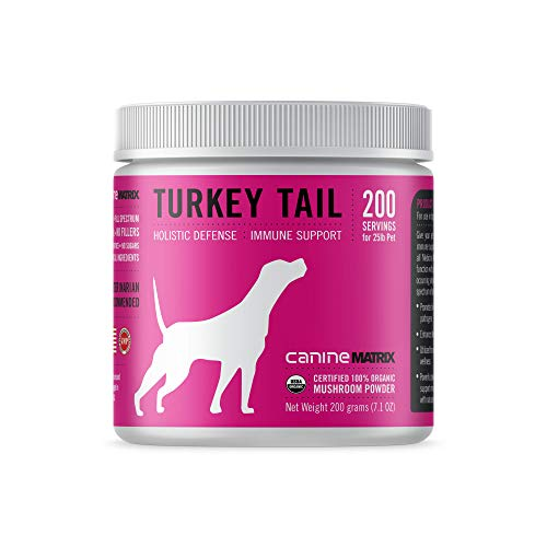 Canine Matrix Organic Mushroom Supplement for Dogs, Turkey Tail, 200 Grams (Canine Turkey Tail 200g)
