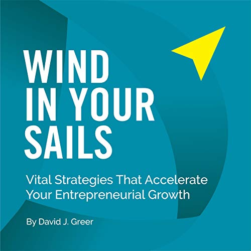 Wind in Your Sails: Vital Strategies That Accelerate Your Entrepreneurial Growth  By  cover art