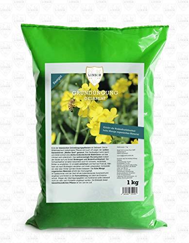 Linsor Gelbsenf Gründünger 1kg | Gründüngung Gelbsenf Gründünger Gelbsenf Senf Samen Gelber Senf Saat Bienen Saatgut Senf Gründünger Senf Weißer Senf Senfsaat Gründünger Bienenweide