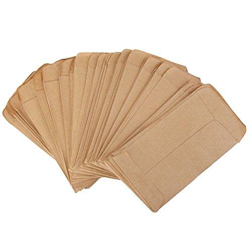 Brussels08 - Buste per semi, in carta kraft, stile vintage, confezione da 100 pezzi, colore: marrone
