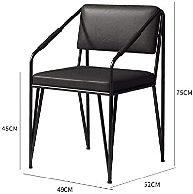 CCSHJ Light Dining Chair Home Back Leisure Stool Restaurant Coffee Shop Computer Office Chair Net Red Chair (Color : B)