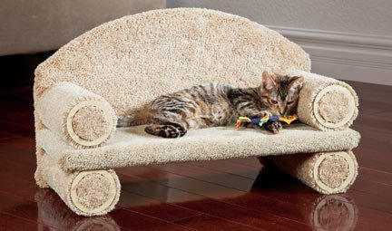 CLASSY KITTY Cat Couch, 25' Assorted colors