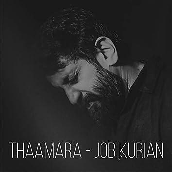 Thaamara (Live)