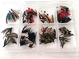 50Plus Angeln Fliegen Wet Auswahl Fly Auswahl Forelle mehr als 50Fliegen in Box Pack # 9