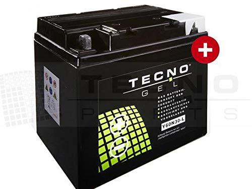 GEL-Motorrad-Batterie TECNO-GEL 53030, 12V Gel-Batterie 30Ah, 187x130x170 mm inkl. Pfand