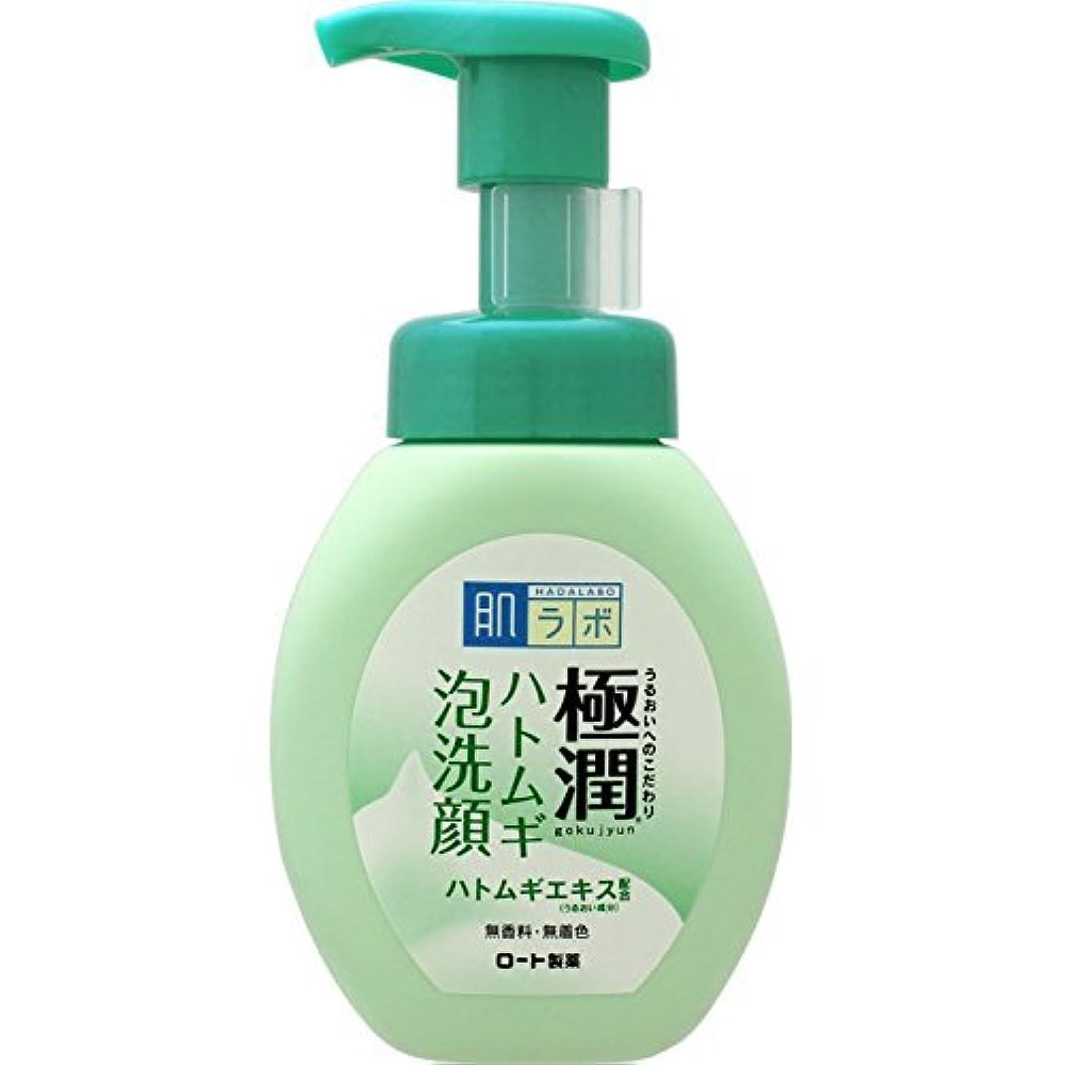 怖い一般化する顕現肌ラボ 極潤 ハトムギ泡洗顔 160mL