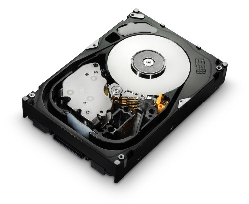 Hitachi Ultrastar 15K600; aoprodcode2ao: HUS156060VLS600 (HUS156060VLS600)