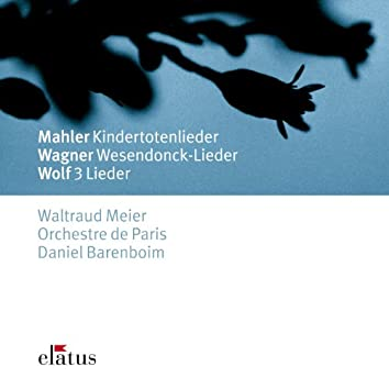 Mahler, Wagner & Wolf : Orchestral Songs  -  Elatus