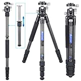 Compact Carbon Fiber Tripod Travel Tripod with Low Profile Ball Head and Two