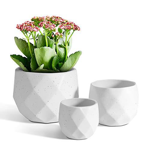 T4U Small Succulent Plant Pot Set of 3, Ceramic Cactus Planter Geometric Indoor Decorative Bonsai Cacti Holder with Drainage Hole White (Plant Not Included)