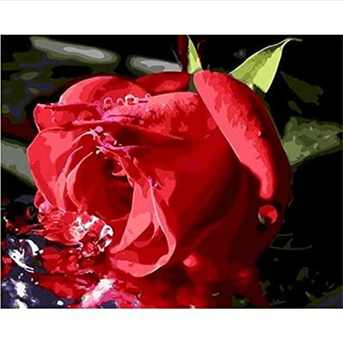 Pintura al óleo de bricolaje por números para adultos Flor rosa Pintar por Números Niños Decoración del Hogar(40*50cm, con marco)