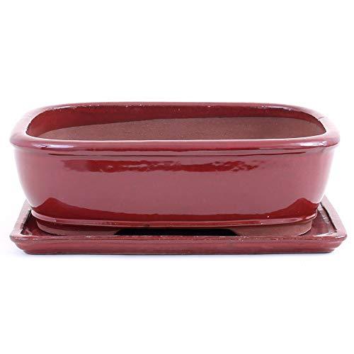 Bonsai 41076 Bol carré avec soucoupe Marron/rouge 32 x 24 x 9,5 cm