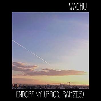 Endorfiny (feat. Ramzes)