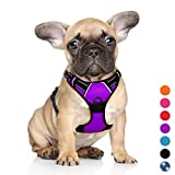 BARKBAY No Pull Dog Harness Large Step in Reflective Dog Harness with Front Clip and Easy Control Handle for Walking Training Running(Purple,S)