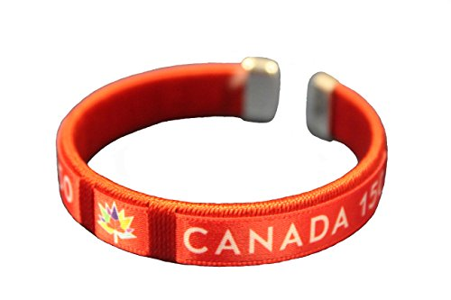 CANADA 150 YEAR ANNIVERSARY 1867-2017 RED 2 X 3 FEET FLAG BANNER