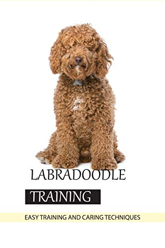 Labradoodle Training- Easy Training And Caring Techniques: Animal Book (English Edition)