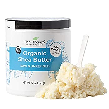 Plant Therapy Organic African Shea Butter Raw Unrefined USDA Certified 16 oz Jar For Body Face & Hair 100% Pure Natural Moisturizer For Dry Cracked Skin Best for DIY Beauty Products Like Lotion Cream Lip Balm and Soap