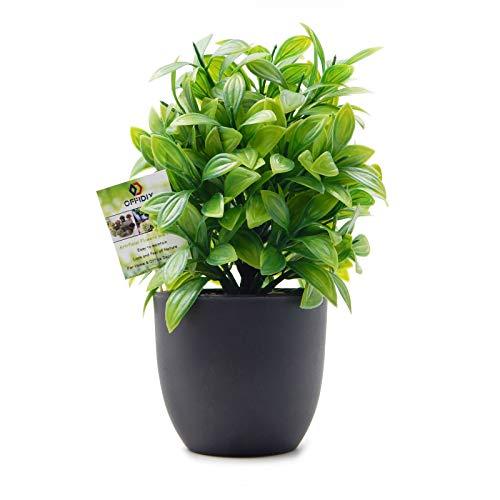 OFFIDIX Planta Artificial de eucalipto de plástico con Maceta, Escritorio de Oficina, hogar y Regalo para Amigos, Planta Falsa con macetas de plástico para decoración del hogar
