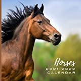 """Horses 2021 - 2022 Calendar: July 2021 to December 2022 